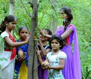 Piplantri: Where 111 Trees Are Planted for Every Girl Child Born