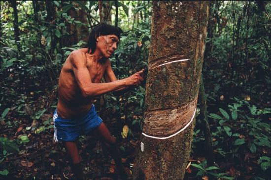 Surui tribesman from the Amazon