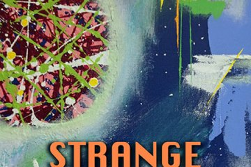Book Cover for Strange Dimensions