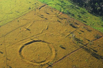Ancient Amazon henge-like structures revealed