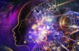 Insights of a psychedelic mind