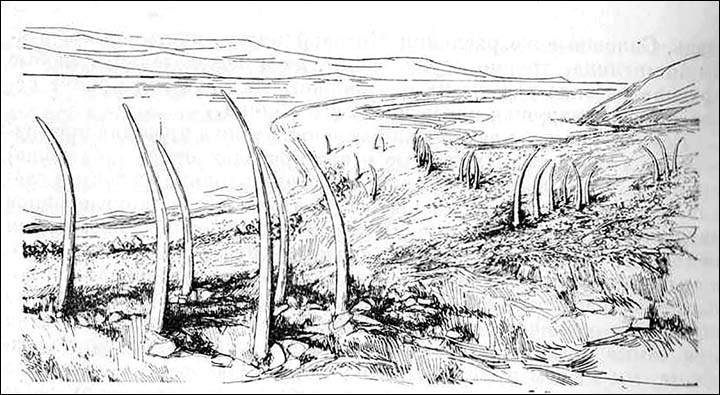 Archaeological sketch of what Whale Bone Alley would have looked like