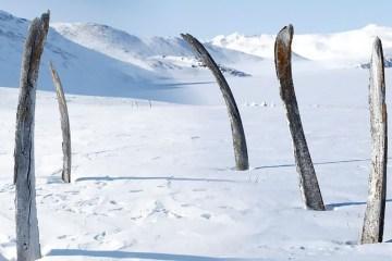 Whale Bone Alley in Siberia