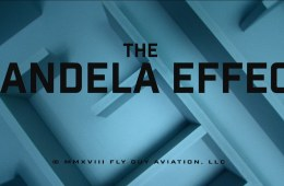 The Mandela Effect Movie