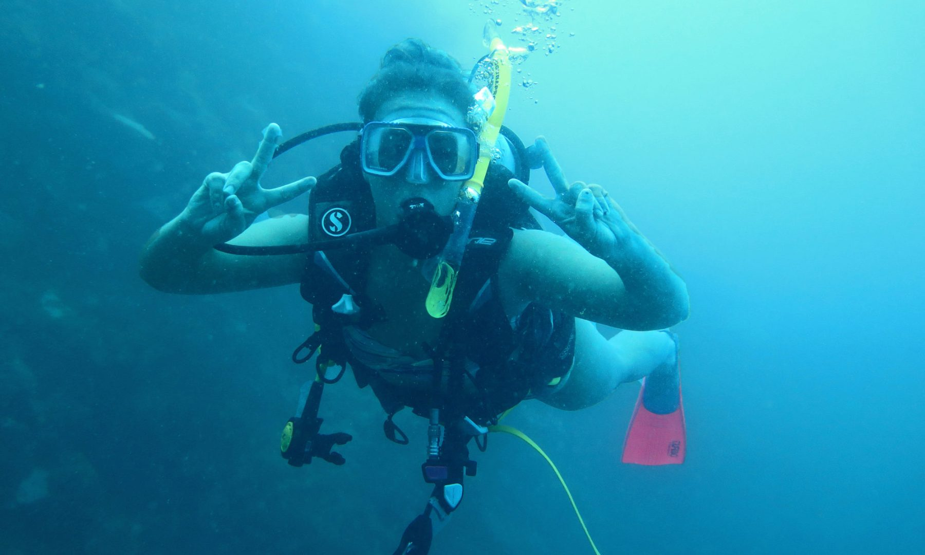 Scuba diving career how to become a scuba instructor daily scuba diving career how to become a scuba instructor xflitez Choice Image
