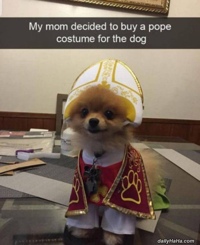 Mom Got A Pope Costume For The Dog