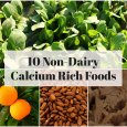 10 Best Plant-Based Calcium Rich Foods