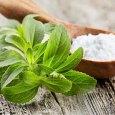 Health Benefits of Stevia