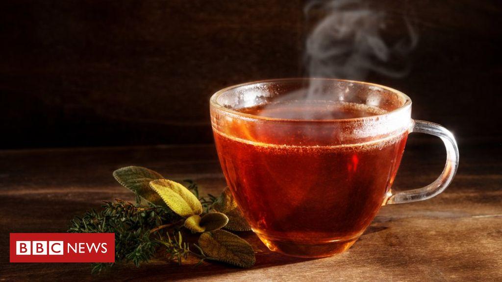 Microplastics: Premium teabags leak billions of Contaminants – Research