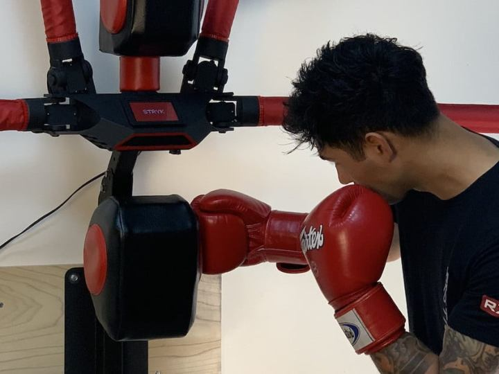 Meet RBX-1: The Robot Punching Bag That Punches Back