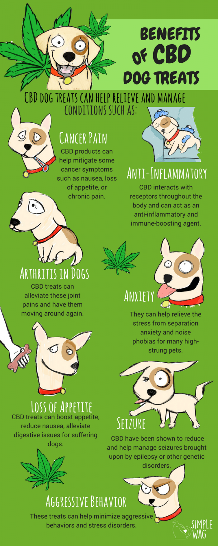 Benefits Of CBD Dog Treats Daily Infographic