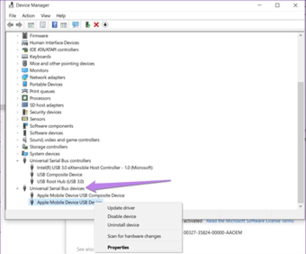 Dcim Folder Empty Iphone Windows 11