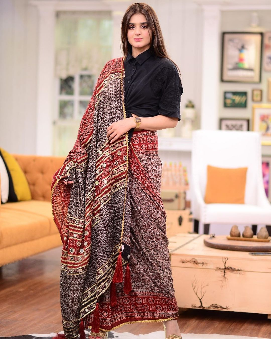 Beautiful Clicks with Different Look of Hira Mani in Saree