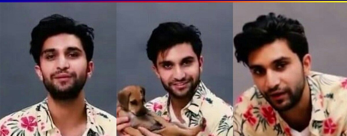 Ahad ft. Puppy Answering Questions, Could It Get Any Cuter ?