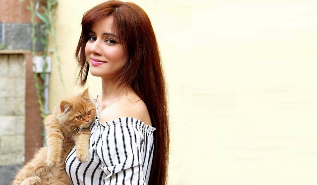 Fans Inappropriate Pictures To Support Rabi Pirzada Trending