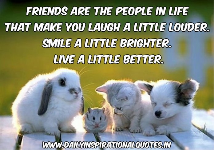 Friends are the people in life that make you laugh… ( Friendship Quotes )