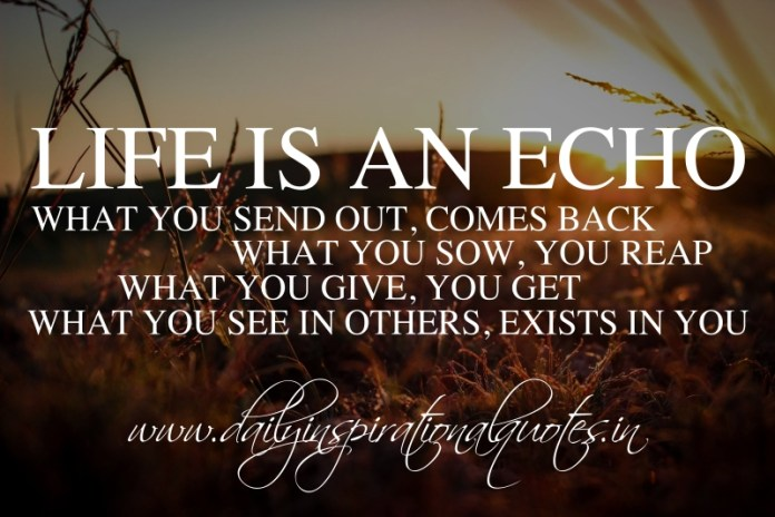 Life is an echo. What you send out, comes back. What you sow, you reap. What you give, you get. What you see in others, exists in you. ~ Zig Ziglar