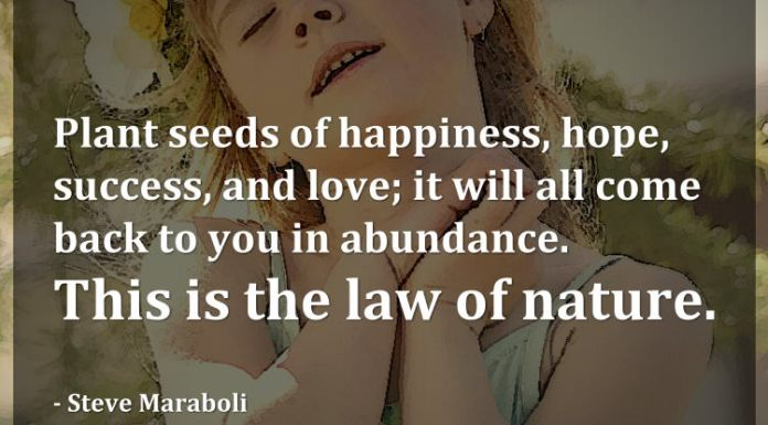 Plant seeds of happiness, hope, success, and love; it will all come back to you in abundance. This is the law of nature. - Steve Maraboli
