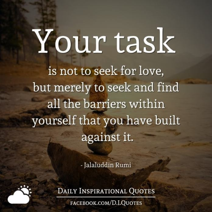 Your task is not to seek for love, but merely to seek and find all the barriers within yourself that you have built against it. - Jalaluddin Rumi