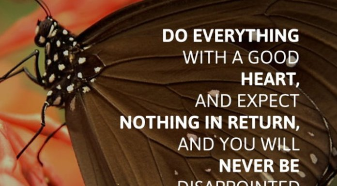 Do everything with a good heart, and expect nothing in return, and you will never be disappointed.