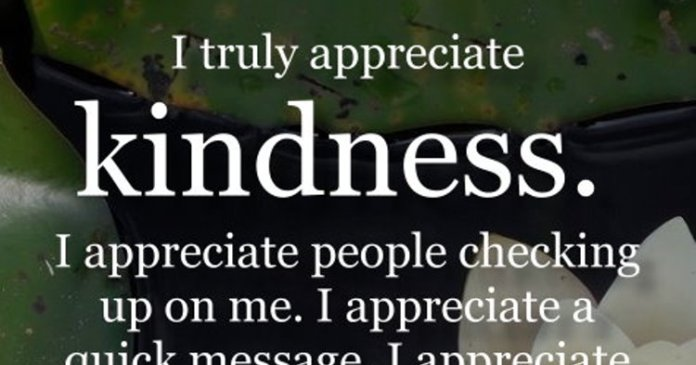 I truly appreciate kindness. I appreciate people checking up on me. I appreciate a quick message, I appreciate those who ask me if I'm okay, I appreciate every single person in my life who has tried to brighten my days. It's the little things that matters the most.