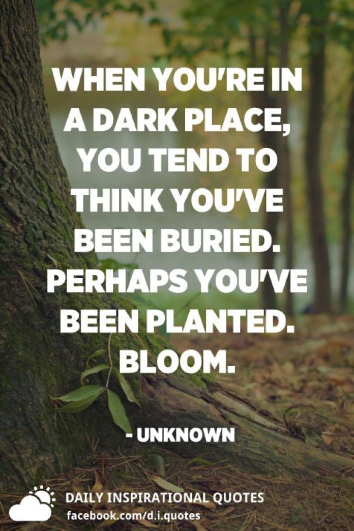 When you're in a dark place, you tend to think you've been buried. Perhaps you've been planted. Bloom. - Unknown