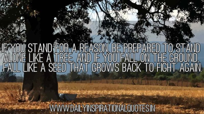 If you stand for a reason, be prepared to stand alone like a tree, and if you fall on the ground, fall like a seed that grows back to fight again. ~ Anonymous