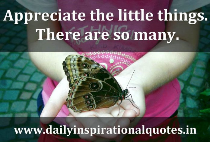 Appreciate the little things. There are so many. ~ Anonymous