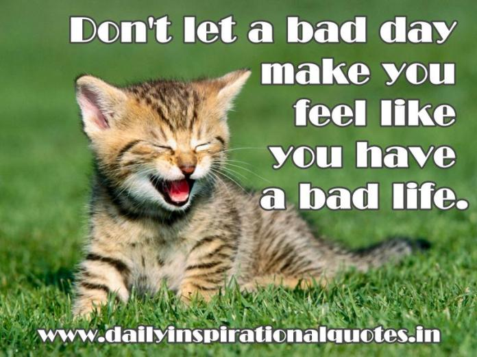 Don't let a bad day make you feel like you have a bad life. ~ Anonymous