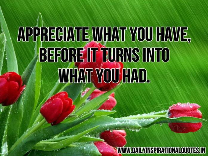 Appreciate what you have, before it turns into what you had. ~ Anonymous