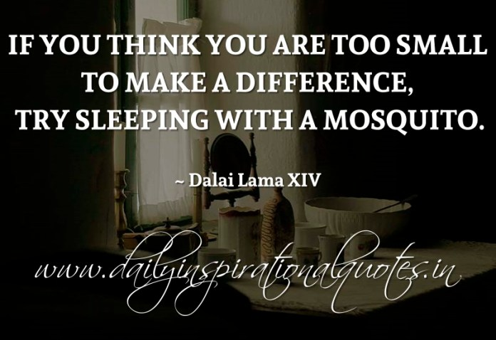 If you think you are too small to make a difference, try sleeping with a mosquito. ~ Dalai Lama XIV