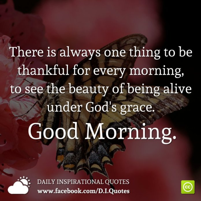 There is always one thing to be thankful for every morning, to see the beauty of being alive under God's grace. Good Morning.