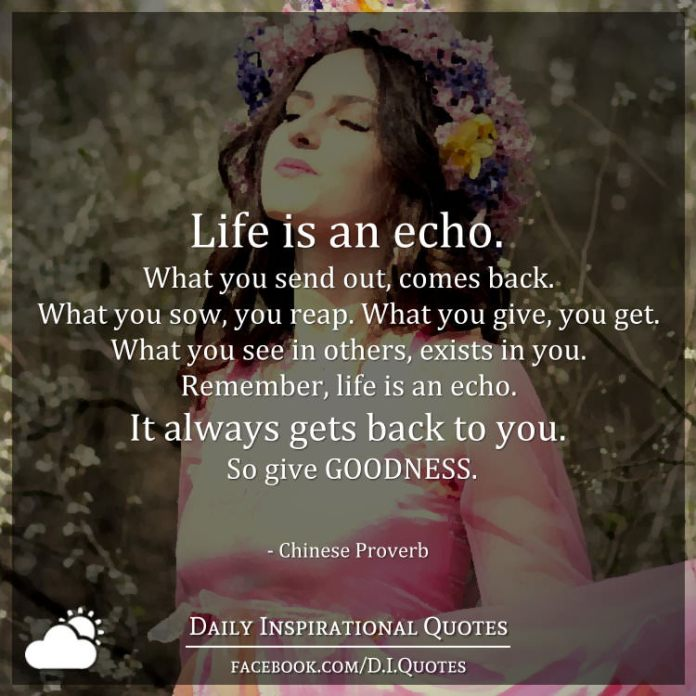 Life Is An Echo Quote Beauteous Life Is An Echowhat You Send Out Comes Backwhat You Sow You