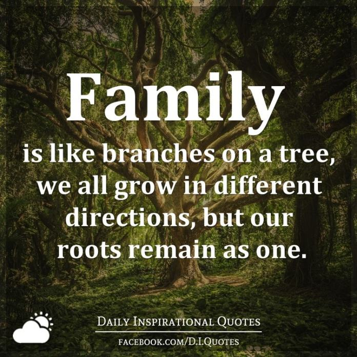 Family is like branches on a tree, we all grow in different directions, but our roots remain as one.