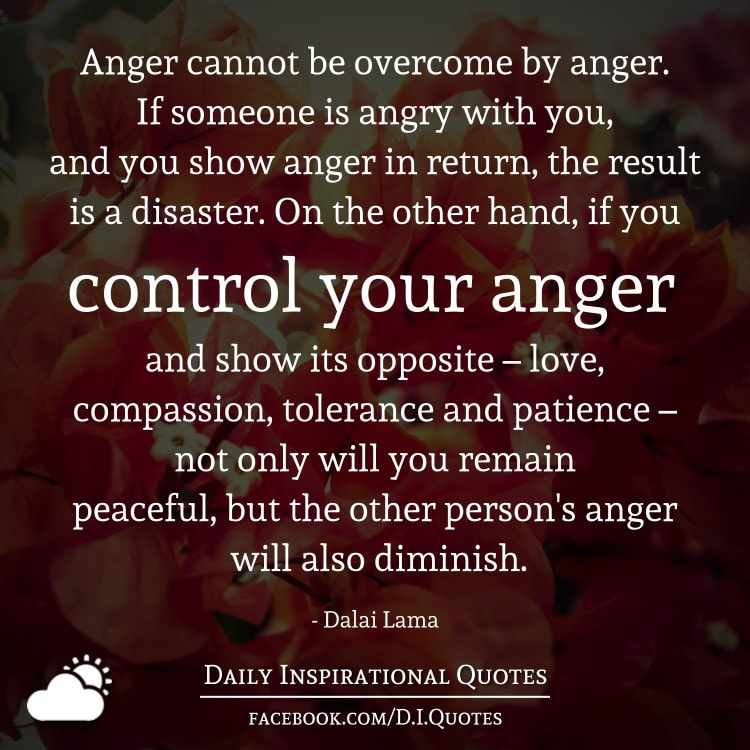 Anger cannot be overcome by anger. If someone is angry with you, and you show anger in return, the result is a disaster. On the other hand, if you control your anger and show its opposite – love, compassion, tolerance and patience – not only will you remain peaceful, but the other person's anger will also diminish. - Dalai Lama