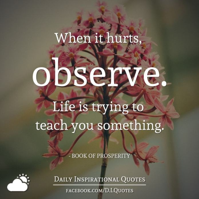 When it hurts, observe. Life is trying to teach you something. - BOOK OF PROSPERITY