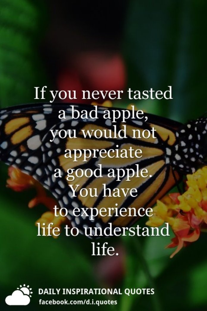 If you never tasted a bad apple, you would not appreciate a good apple. You have to experience life to understand life.