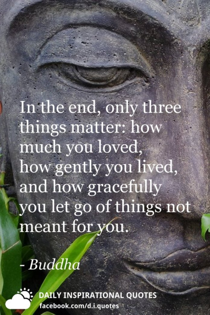In the end, only three things matter: how much you loved, how gently you lived, and how gracefully you let go of things not meant for you. - Buddha