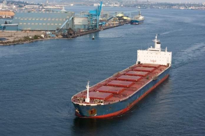 Gearless Bulk Carrier Daily Logistics