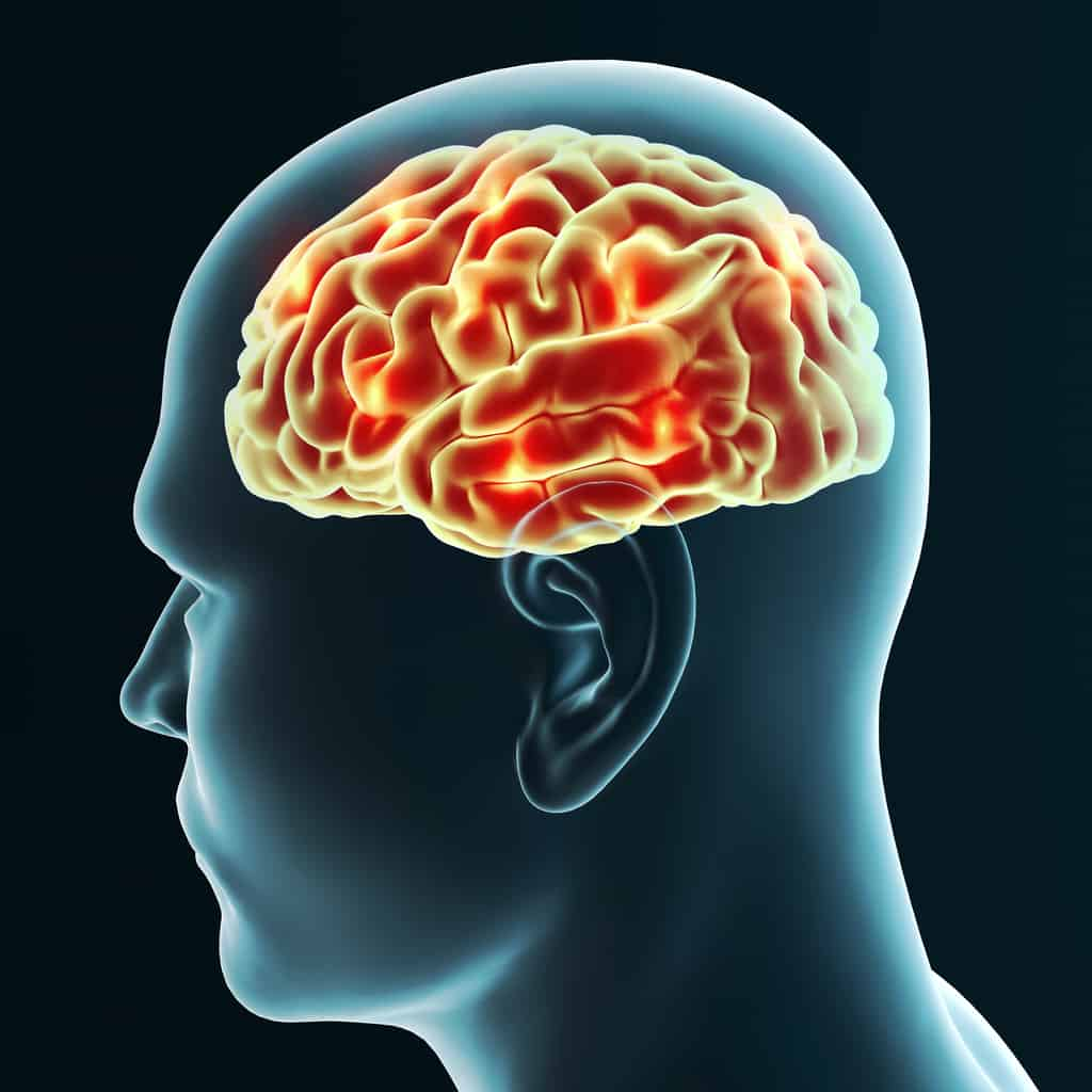 Prevent iron buildup in the brain - new Iron Breakthrough