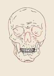 Skull, 2015 – 2016 Ricamo su carta, filo rosso egiziano e filo nero formato 21×29 cm