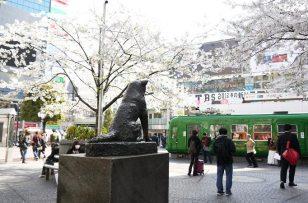 Shibuya_Hachiko