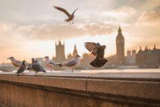 DEST_LONDON_UK_UNSPLASH_CC0_731213_1920
