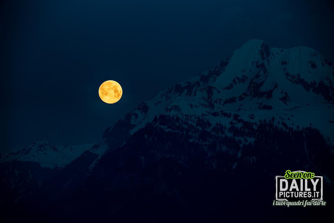 Black Light Moon
