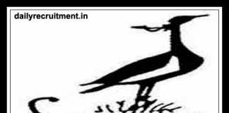 SACON Recruitment 2019, Apply for Assistant & Various