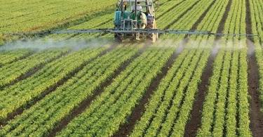 Top 10 Importance Of Agriculture In Nigeria