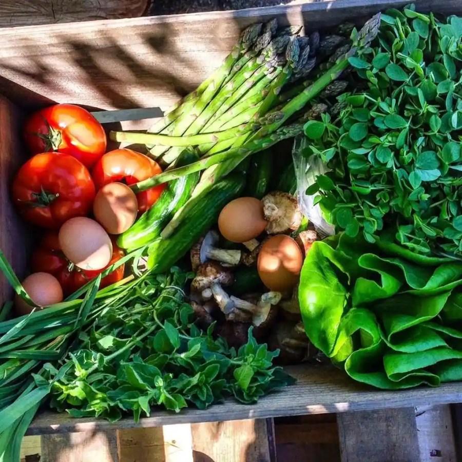 Plan B May 20 basket  www.dailytiramisu.com