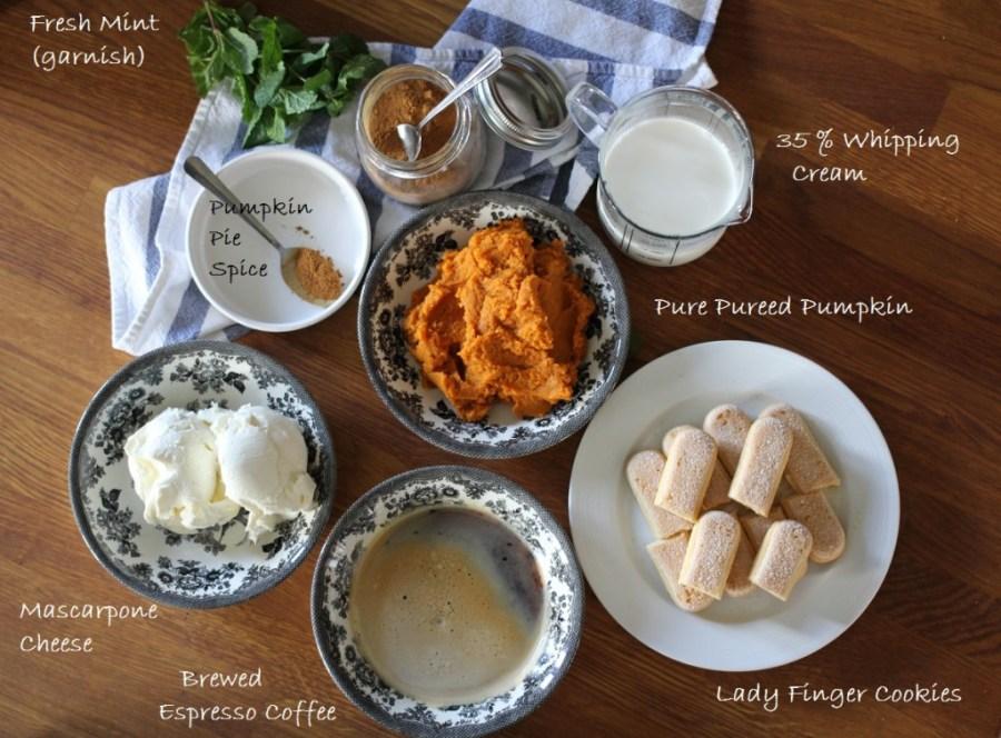 Pumpkin Spiced Latte Tiramisu www.dailytiramisu.com