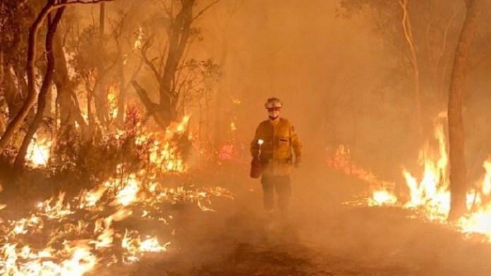 State of emergency declared in Australia over bushfire crisis