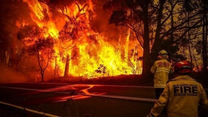 Travel warnings issued over Australia's severe bushfire crisis
